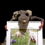 Calendrier Rat