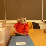 Rat à l'école